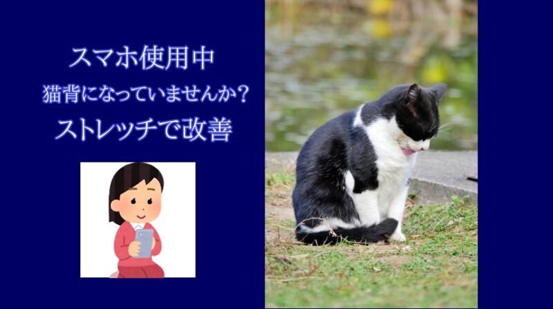スマホのやりすぎで猫背に?改善にはストレッチが効果的!