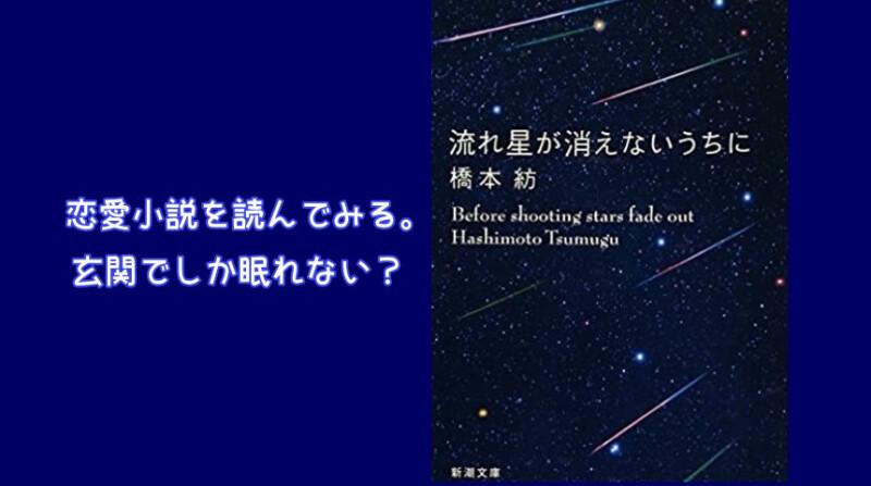橋爪紡さんの恋愛小説『流れ星が消えないうちに』を読んでみた。