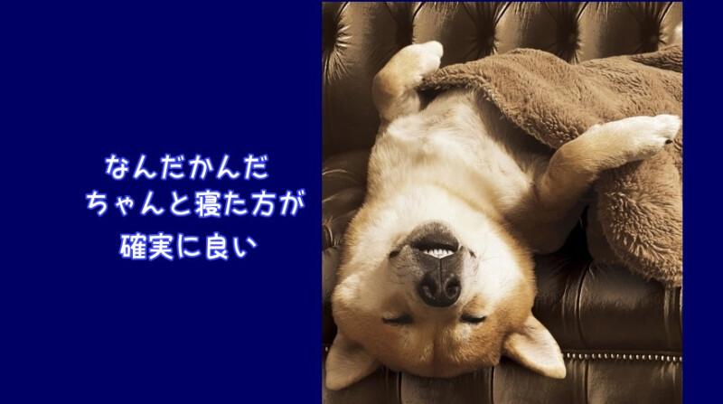 睡眠時間は平均7時間15分くらい。~心身ともに健康を維持~